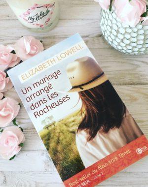 roman d'amour historique cow boy