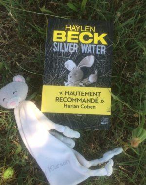 Silver Water thriller