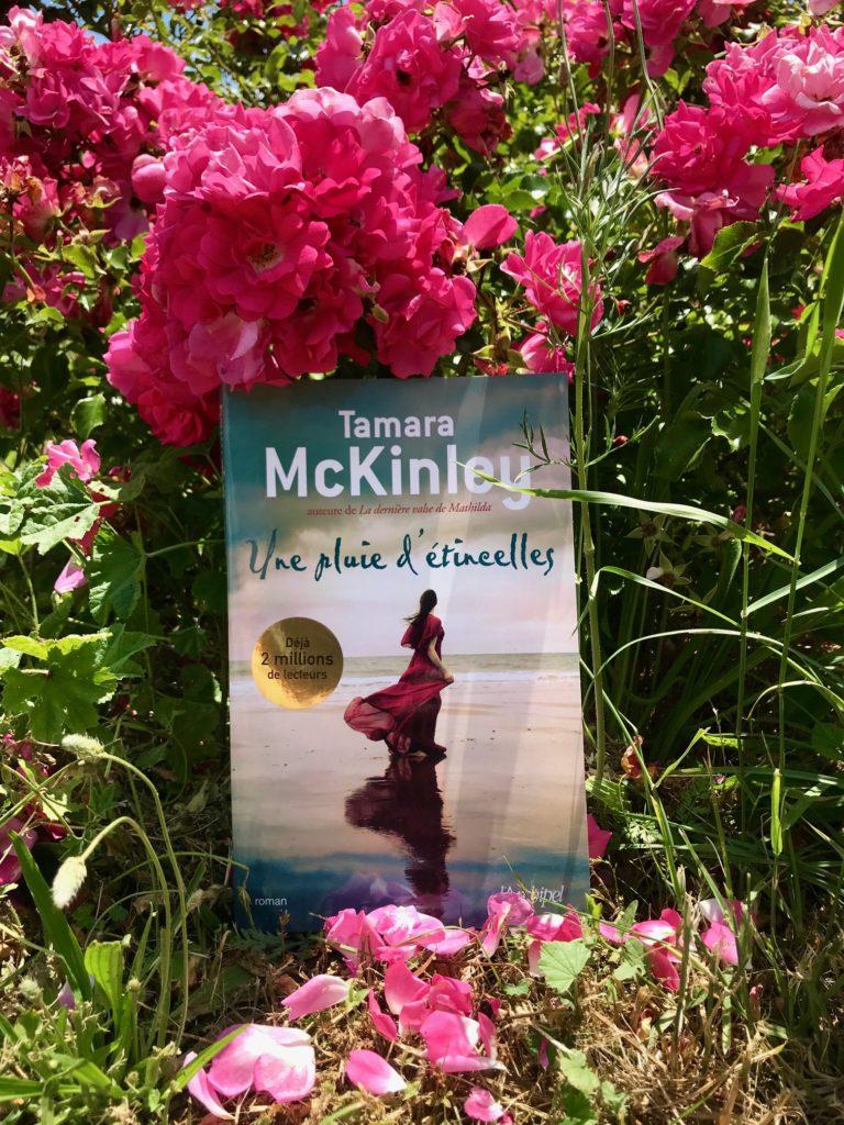 Tamara McKinley roman Une pluie d'étincelles